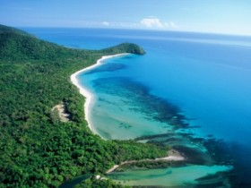 Cape Tribulation Camping - Accommodation Great Ocean Road