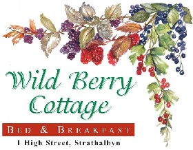 Wild Berry Cottage - Accommodation Great Ocean Road