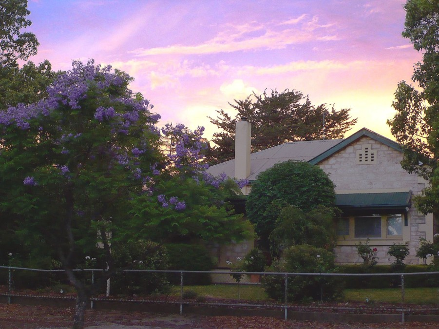 Angaston Rose BB - Accommodation Great Ocean Road