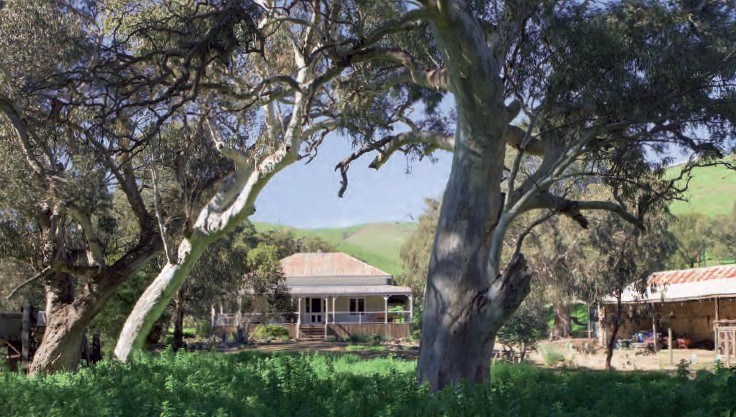 Brooklyn Farm Bed and Breakfast - Accommodation Great Ocean Road