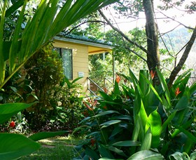 Daintree Valley Haven - Accommodation Great Ocean Road