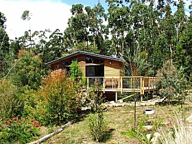 Southern Forest Accommodation - Accommodation Great Ocean Road