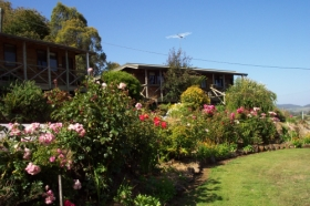 Mole Creek Holiday Village - Accommodation Great Ocean Road