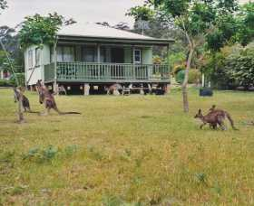 Berringer Lake Holiday Cottages - Accommodation Great Ocean Road