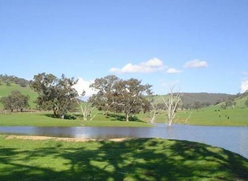 Hillview Farmstay - Accommodation Great Ocean Road