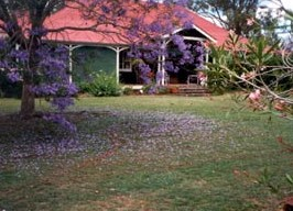 Minmore Farmstay Bed and Breakfast - Accommodation Great Ocean Road
