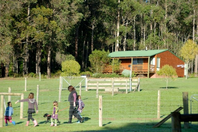 Diamond Forest Farm Stay - Accommodation Great Ocean Road