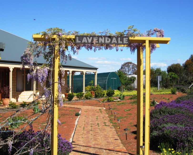 Lavendale Farmstay and Cottages - Accommodation Great Ocean Road