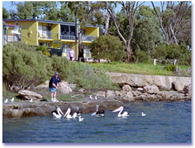 Almonta Holiday Apartments - Accommodation Great Ocean Road