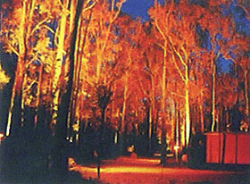 Dwellingup Chalet amp Caravan Park - Accommodation Great Ocean Road