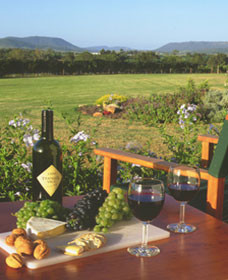 Tranquil Vale Vineyard Cottages - Accommodation Great Ocean Road