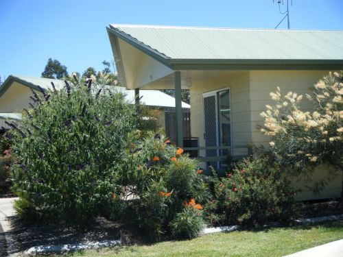 Pepper Tree Cabins - Accommodation Great Ocean Road