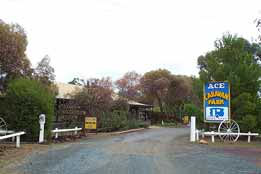 Ace Caravan Park - Accommodation Great Ocean Road