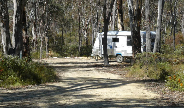 Blatherarm campground and picnic area - Accommodation Great Ocean Road