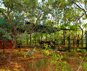 Arnhemland Barramundi Nature Lodge - Accommodation Great Ocean Road