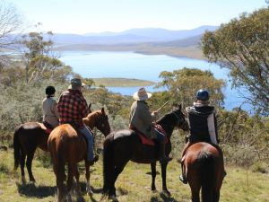 Reynella Homestead and Horseback Rides - Accommodation Great Ocean Road