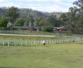 Kellarni Downs Farmstay-Scenic Rim - Accommodation Great Ocean Road