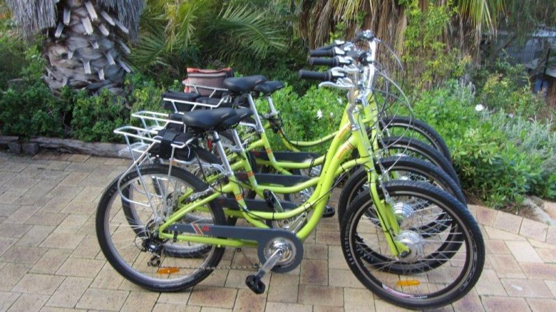 Paul's Eco E Bike Tours - Accommodation Great Ocean Road