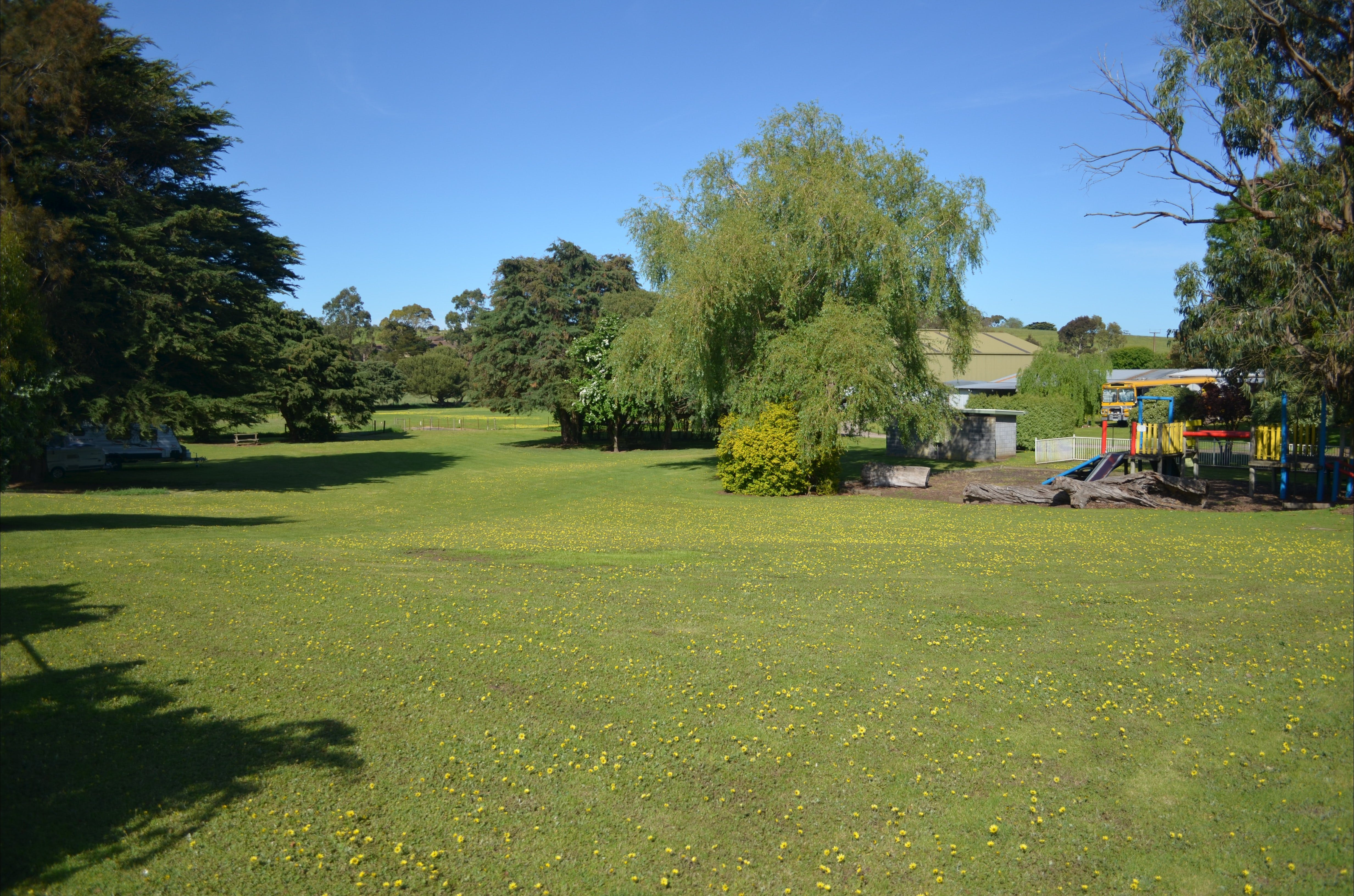 Pine Country Caravan Park - Pet Friendly - Accommodation Great Ocean Road