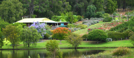 Pemberton Lavender and Berry Farm Cafe and Cottages - Accommodation Great Ocean Road
