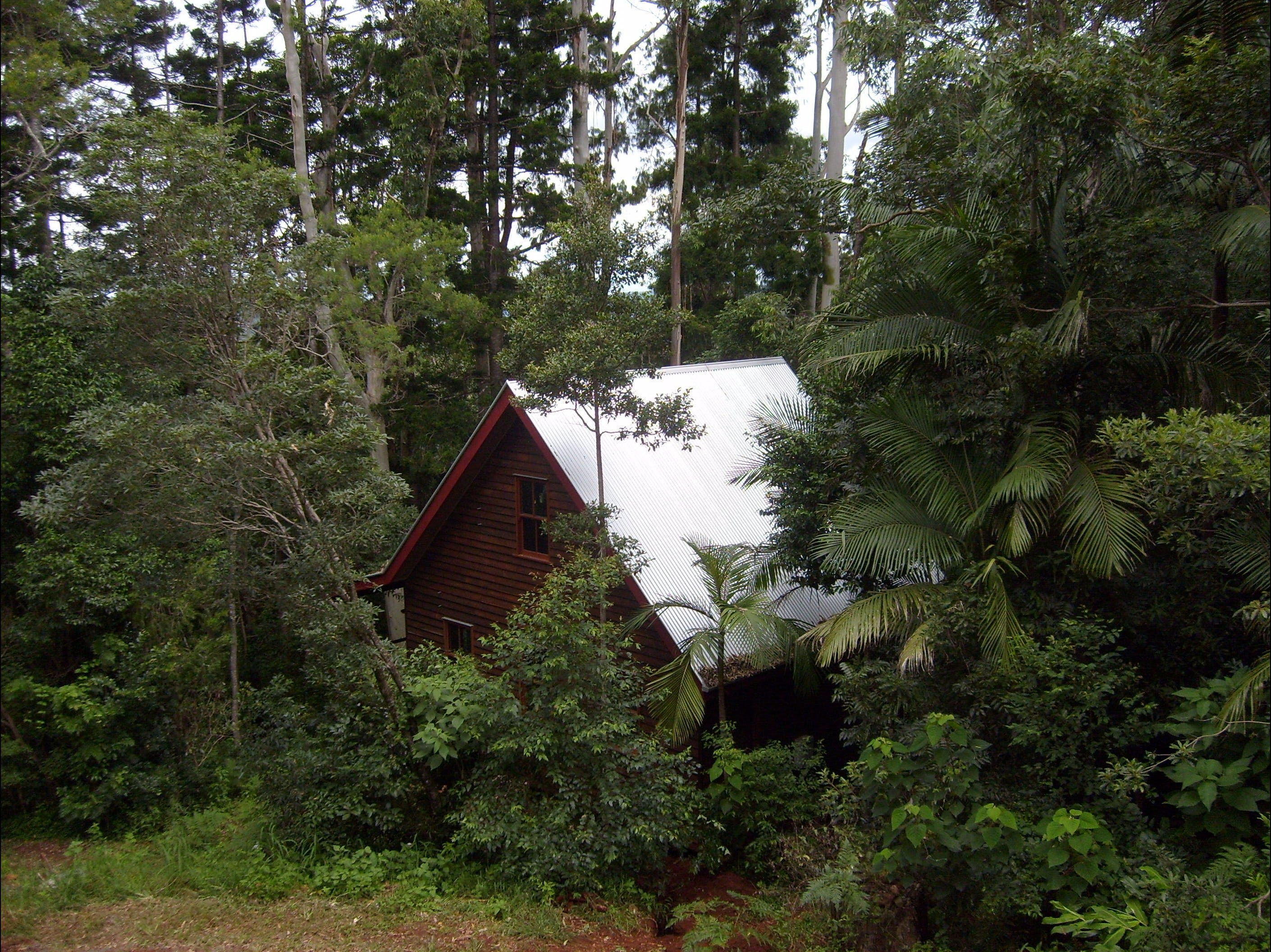 Turkeys Nest Rainforest Cottages Mt Glorious - Accommodation Great Ocean Road