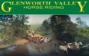 Glenworth Valley Horseriding - Accommodation Great Ocean Road