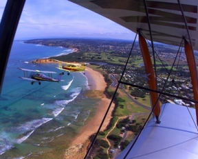 Tiger Moth World Adventure Park - Accommodation Great Ocean Road