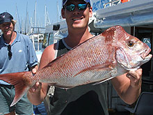 Sunshine Coast Fishing Charters - Accommodation Great Ocean Road
