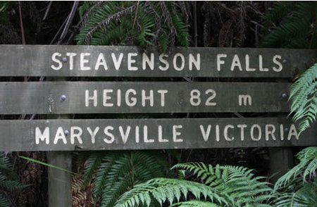 Stevensons Falls - Accommodation Great Ocean Road