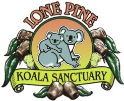 Lone Pine Koala Sanctuary - Accommodation Great Ocean Road