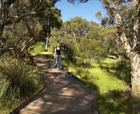 Leschenault Peninsula Conservation Park - Accommodation Great Ocean Road