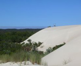 Yeagerup Sand Dunes - Accommodation Great Ocean Road
