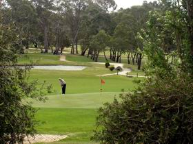 Mount Barker-Hahndorf Golf Club - Accommodation Great Ocean Road