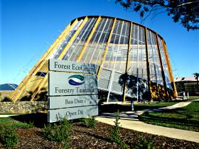 Forest EcoCentre - Accommodation Great Ocean Road