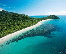 Cape Tribulation Daintree National Park - Accommodation Great Ocean Road