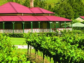 OReillys Canungra Valley Vineyards - Accommodation Great Ocean Road