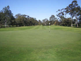 Maffra Golf Club - Accommodation Great Ocean Road