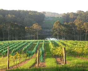 Tilba Valley Wines - Accommodation Great Ocean Road