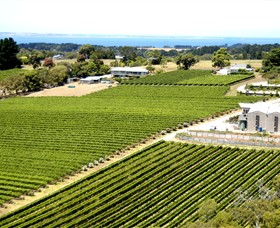Paringa Estate Winery and Restaurant - Accommodation Great Ocean Road