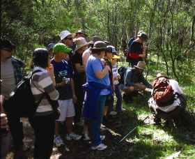 Warrumbungle National Park Discovery Program - Accommodation Great Ocean Road