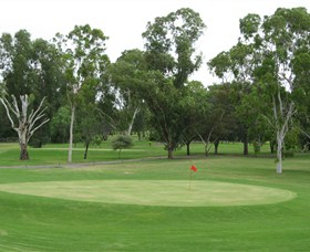 Moree Golf Club - Accommodation Great Ocean Road