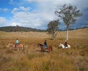 Chapman Valley Horse Riding - Accommodation Great Ocean Road