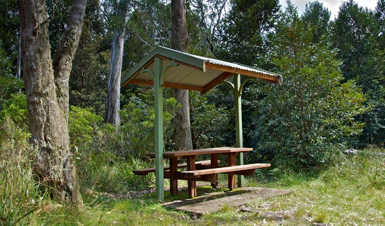 Devils Hole lookout walk and picnic area - Accommodation Great Ocean Road