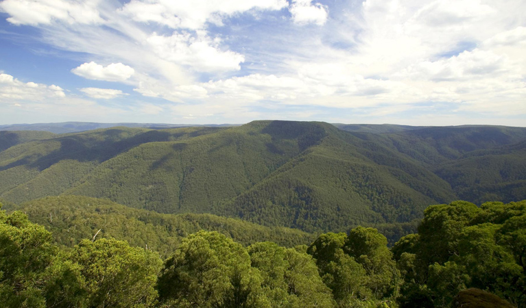 Barrington Tops National Park - Accommodation Great Ocean Road