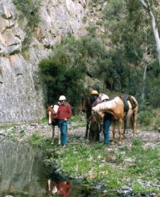 Yarramba Horse Riding - Accommodation Great Ocean Road