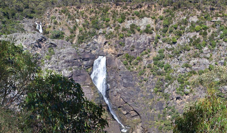 Tia Falls walk - Accommodation Great Ocean Road