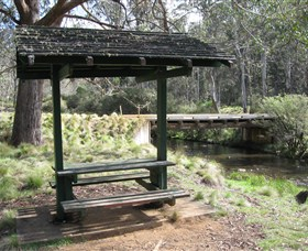 Barrington Tops State Forest - Accommodation Great Ocean Road