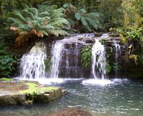 Barrington Tops National Park Walks - Accommodation Great Ocean Road