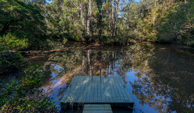 Brimbin Nature Reserve - Accommodation Great Ocean Road