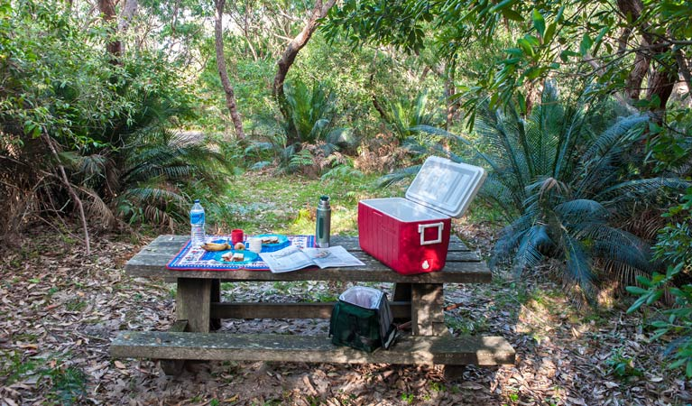 Broadwater Beach picnic area - Accommodation Great Ocean Road